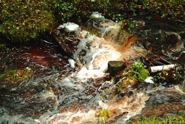 Munising Falls Art | DocSaundersPhotography