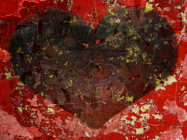 Heart Of Red Photography Art | Mark Steele Photography Inc