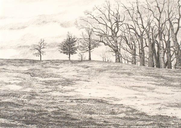 Art Hill