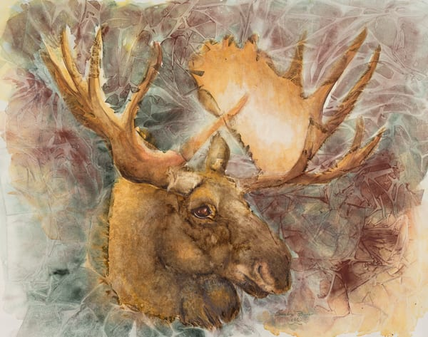 Forest Moose  Art | Debra Bruner Studio