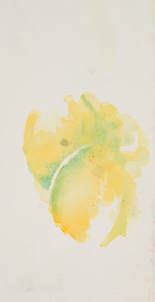 Lemons  Art | Debra Bruner Studio
