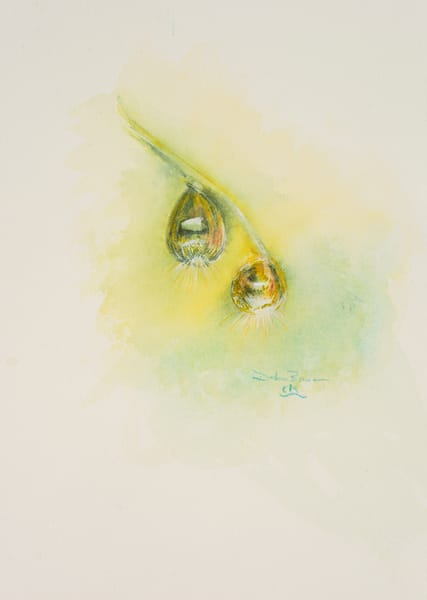 Morning Dew Drops Art | Debra Bruner Studio