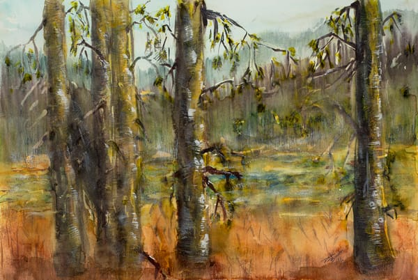Meadows Wetlands  Art | Debra Bruner Studio