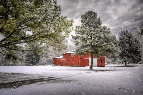 Kentucky Winter Photography Art | Studio 221 Photography