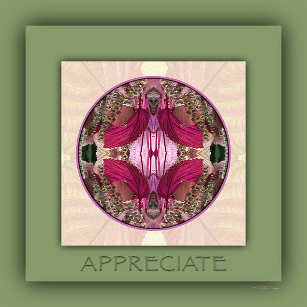 Red Shiso Number 1 APPRECIATE - Debra Cortese Designs