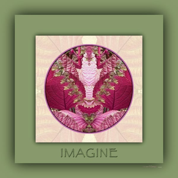 Red Shiso Manifestation Mandalas