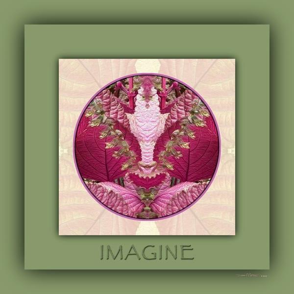 Red Shiso Number 3 IMAGINE - Debra Cortese Designs