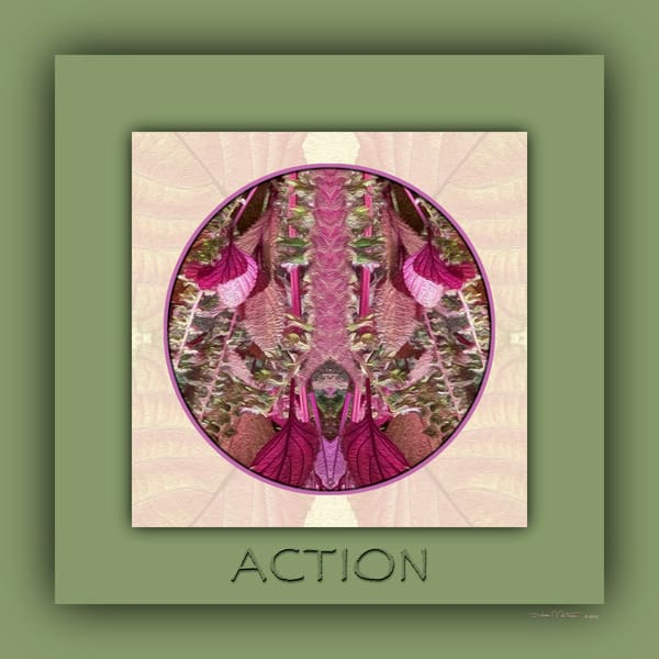Red Shiso Number 4 ACTION - Debra Cortese Designs