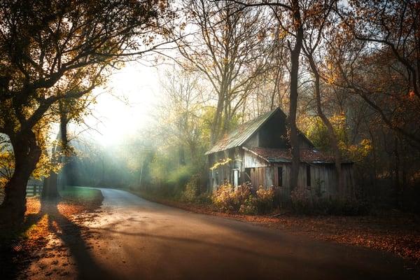 Misty Morning  Photography Art | Studio 221 Photography