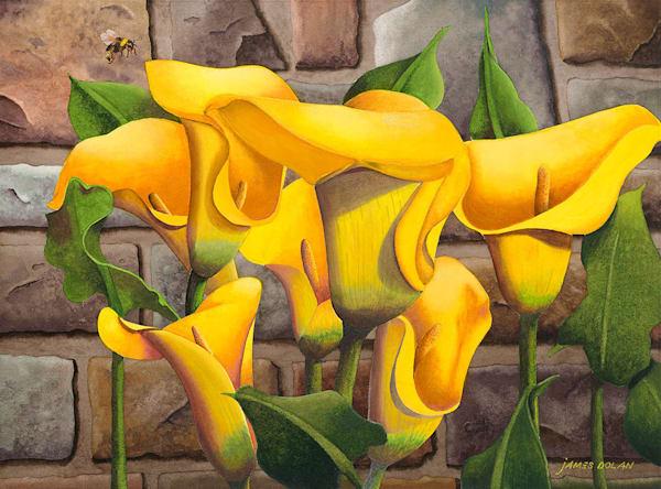 Fine art prints of Watercolor art work by Jim Dolan.