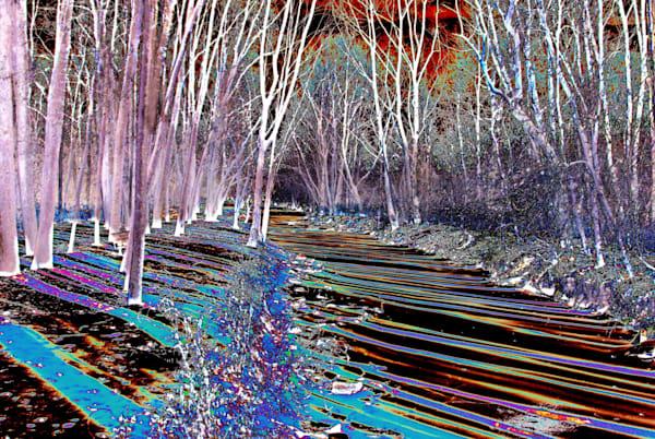Rouge River 2 Art | DocSaundersPhotography