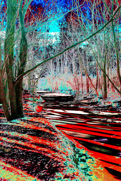 Rouge River With Curves 3 Art | DocSaundersPhotography