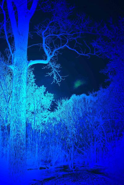 Rouge River Tributary Blue Omni 2 Art | DocSaundersPhotography