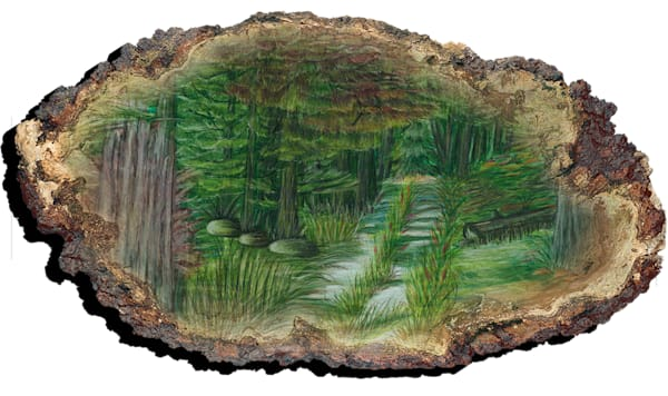 """Deep Woods Trail"" PF"