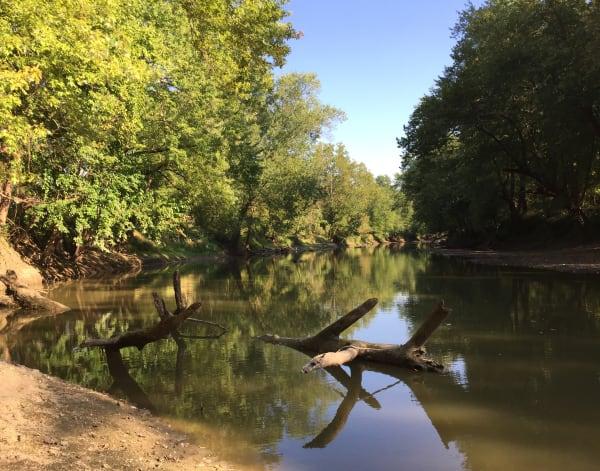 Embarras River in September