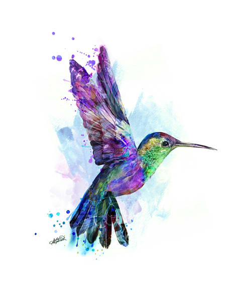 Colorful Hummingbird Painting