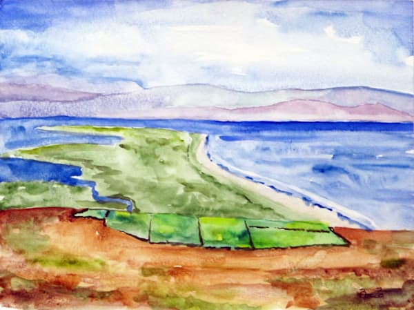 Inch Beach From The Hillside Art | David Beale