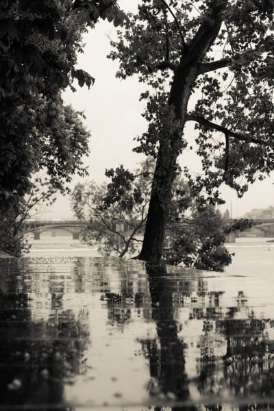 Reflection, Vltava River, Prague