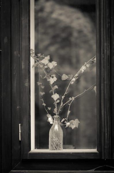 Homage, Prague  Photography Art | CS Gray Photograpy