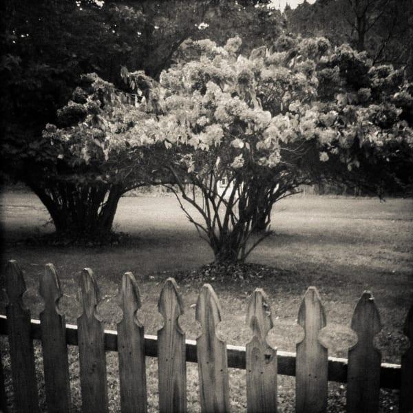 Gothic, Upstate New York 1 Photography Art | CS Gray Photograpy