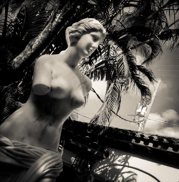 Palm Beach De Milo