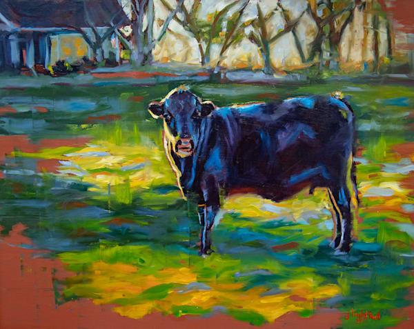 Sunkissed Bovine Art | Jamie Lightfoot, Artist