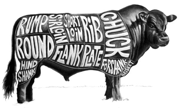 Beef, cuts, illustration, Spear