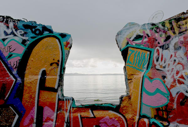 'Graffitti to the Bay-Albany' Photograph for sale as Fine Art