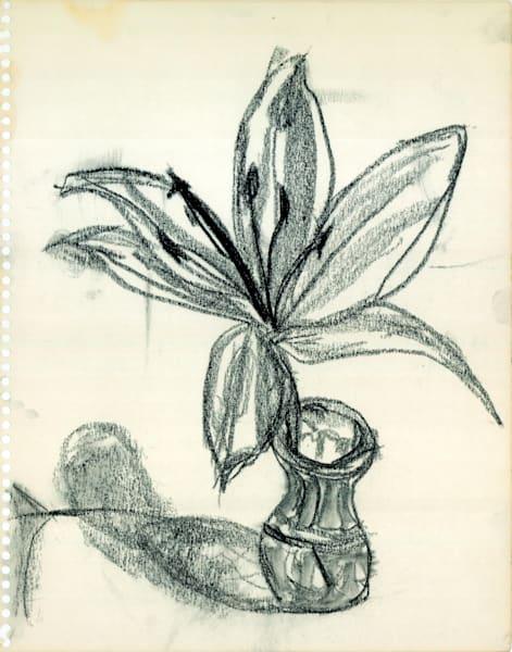 All Black Lily Art   Howard Lawrence Fine Art