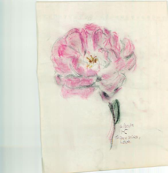 One Pale Red Rose Art | Howard Lawrence Fine Art