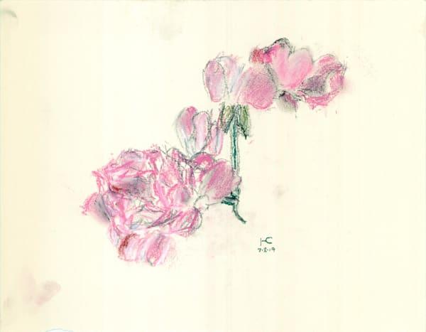 Pale Red Roses Art | Howard Lawrence Fine Art