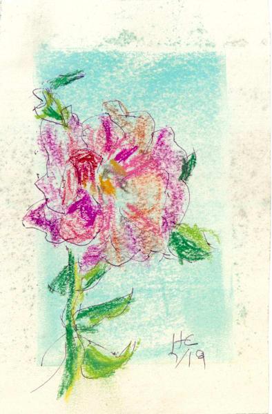 Red Rose Against The Blue Art | Howard Lawrence Fine Art