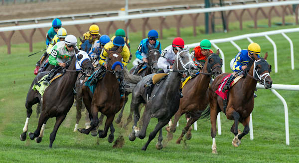 Photography By Festine inner turf race