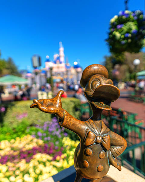 Donald Duck And Sleeping Beauty Castle Photography Art | William Drew Photography