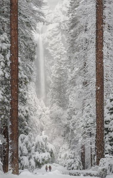 Award Winning Intimate Landscape — Yosemite Falls by Charlotte Gibb