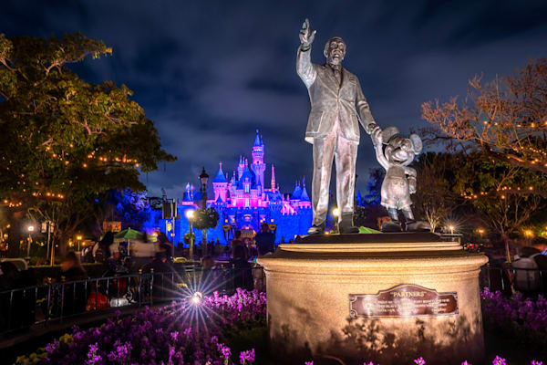 Disneyland at Night - Disneyland Castle Photos