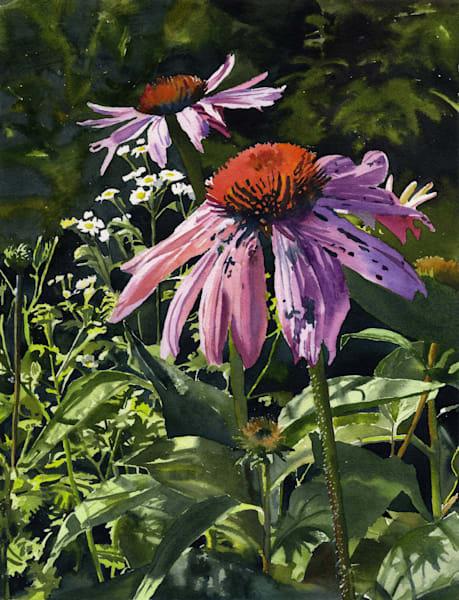 Purple Coneflowers Art | Machalarts Watercolor Studio