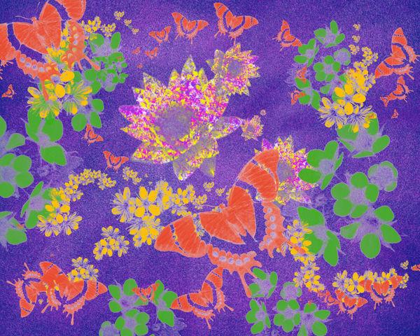 Butterflies by Karlana Pedersen