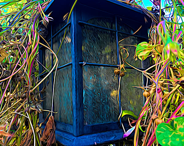Lightpost and Vines|Fine Art Photography by Artist Todd Breitling