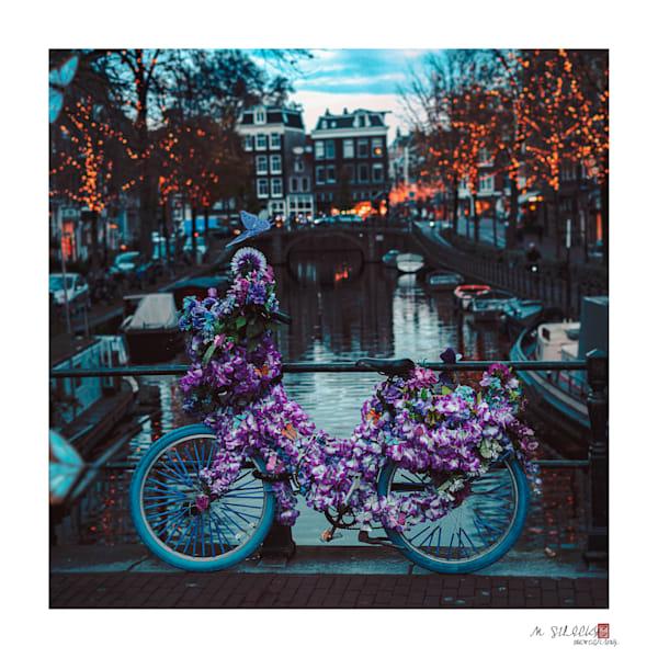 Matej Silecky, Amsterdam Bicycles