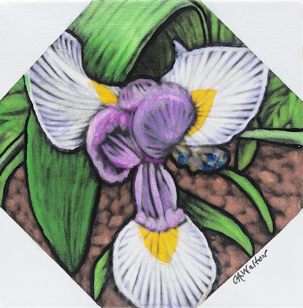 Wild Iris Mixed Media on Canvas