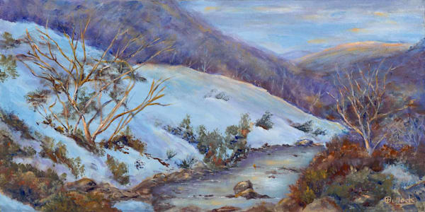 Snowy Mountains, Tumut Area