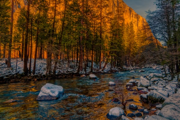 Yosemite Winter Photography Art | FocusPro Services, Inc.