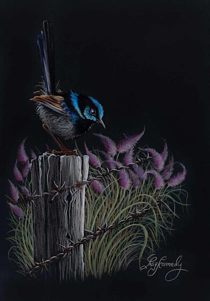 Fairy Wren Post