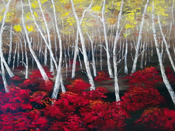 LMuraski-Birch-Forest