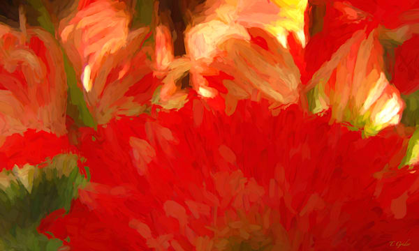 RED GERBERA ABSTRACT