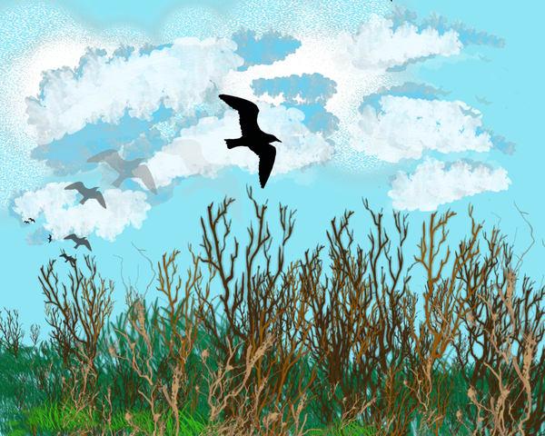 Blackbird in Flight by Karlana Pedersen