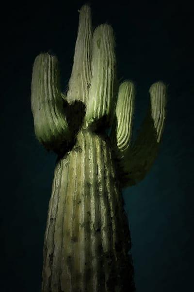 Saguaro2