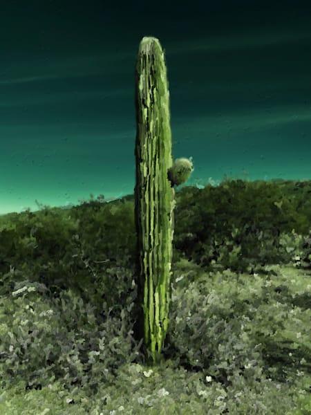 SaguaroBlosssom