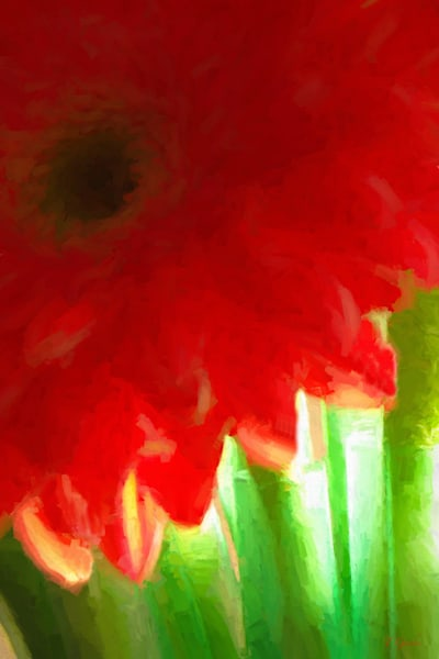 RED GERBERA PORTRAIT EDITION